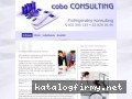 Cobo Consulting